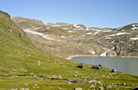 Hardangervidda - by Anne
