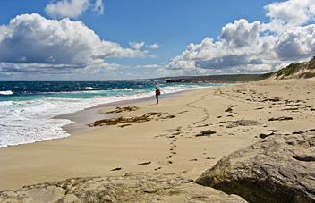 Cape to Cape track: Leeuwin-Naturaliste National Park - by Erin and Leif